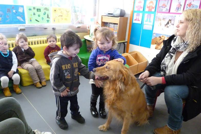 Kp huisdieren basisschool de klimop for Basisschool tabitha